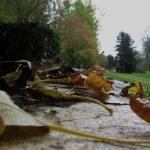 Concours « couleurs d'automne »