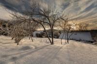 Neige et coucher de soleil au jardin