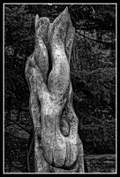 Sculpture_arbre_Jacques Pissemen_final.jpg
