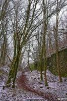Bois_et_citadelle_sous_la_neige_HDR_final.jpg